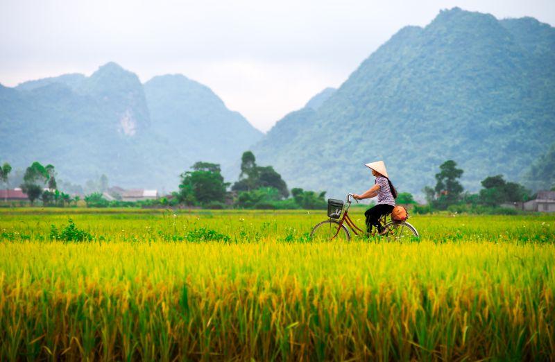 Přímé letenky do Vietnamu! Letenky za 13990 Kč včetně zavazadla s odletem z Prahy