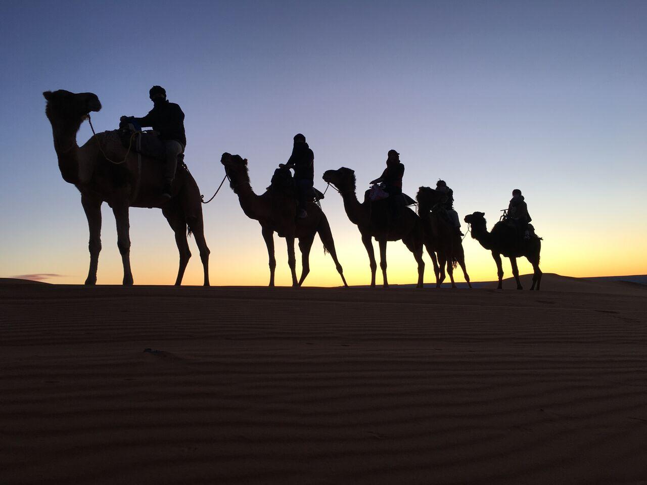 Snášenlivost, Souk a Sahara