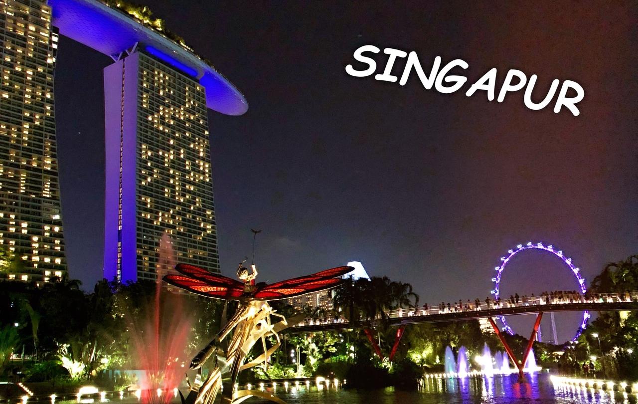 Singapur - město plné imponzantních světel, centrum projdete za pouhý den