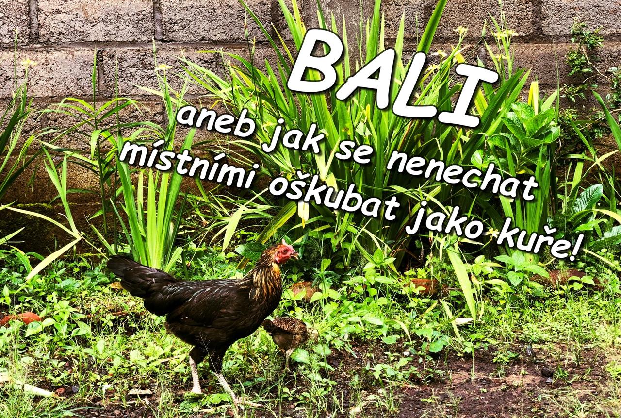 Bali - aneb jak se nenechat místními oškubat jako kuře!