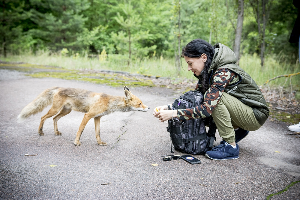 Život se vrací do Černobylu