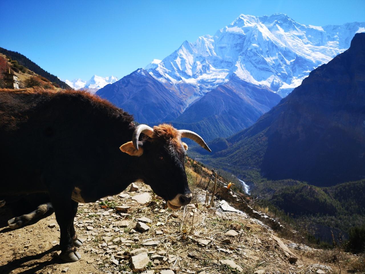 Švajďáci na cestě – Nepál a procházka po horách