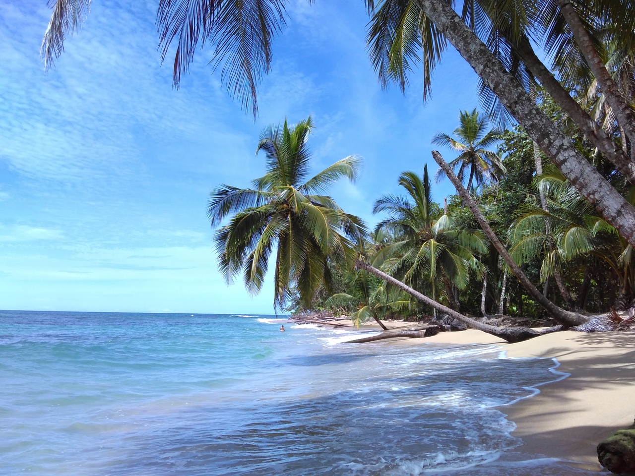 Kostarika - země padesáti odstínů zelené